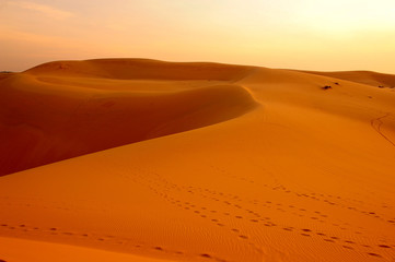 Fototapeta Pustynia Desert Landscape