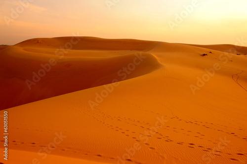 Desert Landscape - 63051550