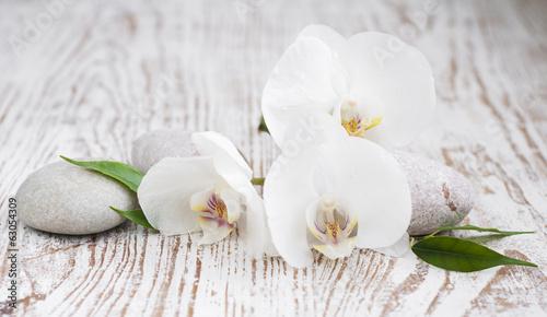 Fotografía Orchids spa
