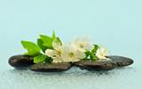 Fototapeta Kamienie - Białe kwiaty na kamieniach do spa