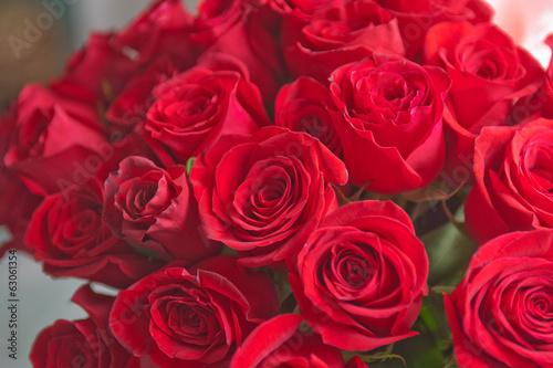 roses background #63061354