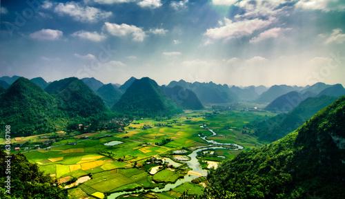 Garden Poster Rice fields Rice fields on mountain in vietnam