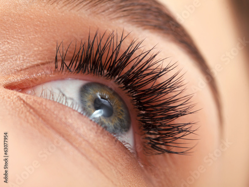 Poster  Woman eye with long eyelashes. Eyelash extension