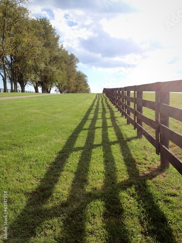 Fotografie, Obraz  Countryside, horse farm