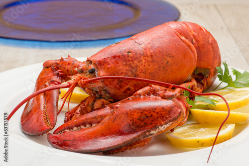 Valokuva  Astice rosso posto su un piatto