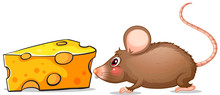 A Mouse And A Slice Of Cheese