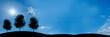 canvas print picture - website banner - 3 baeume - format 3 zu 1 - g726