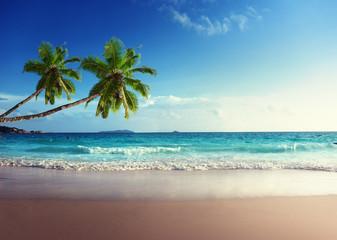 Obraz na Szklesunset on Seychelles beach