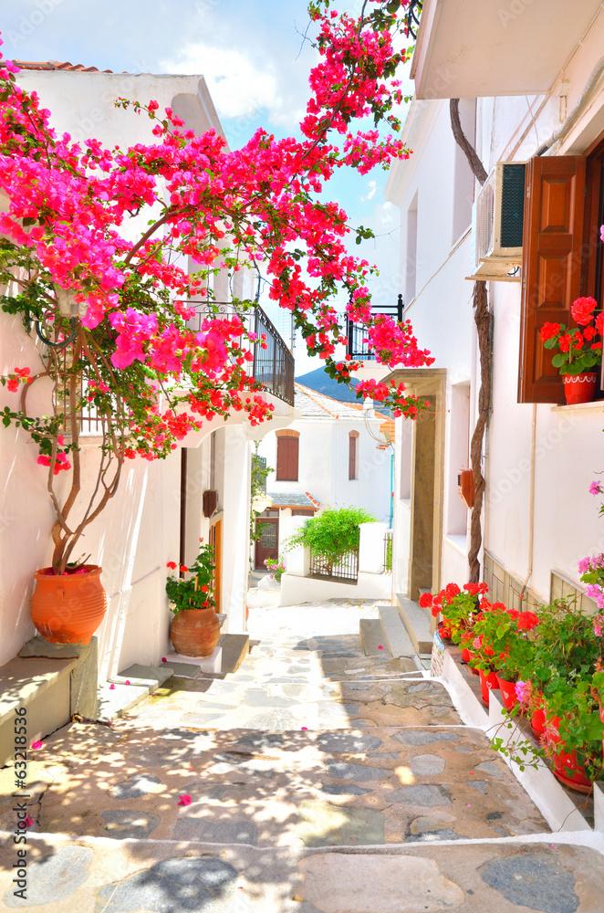 Fototapety, obrazy: Bougainvillea on the narrow streets of Skopelos, Greece