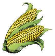 Corn Vintage Woodcut Illustration
