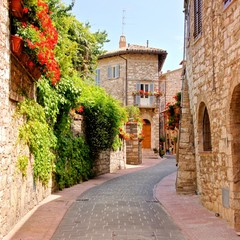 Obraz na Szkle Uliczki Flower lined street in the town of Assisi, Italy