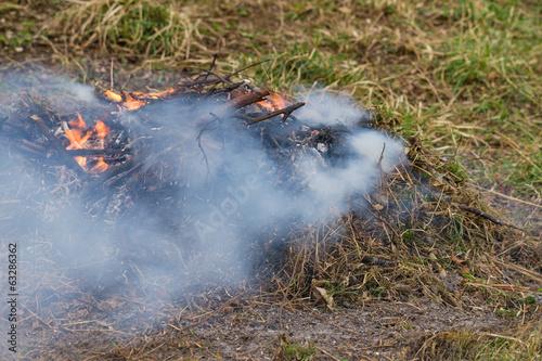 Valokuva  Fire