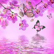 canvas print picture - Floral background of tropical orchids and  butterfly