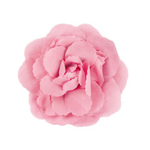 Pink Brooch Flower Isolated On...