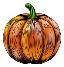 Pumpkin Vintage Woodcut Illustration