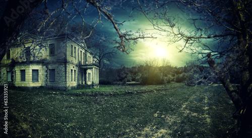 Fotografie, Obraz  Spooky haunted house