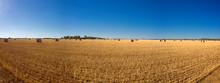 Round Hay Bails On An Australi...