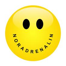 Smiley Mit Schriftzug NORADREN...