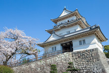 Spring Odawara Castle