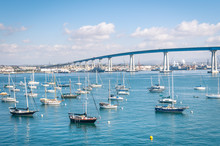 San Diego Waterfront With Sailing Boats