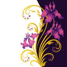 Greeting Card With Flower Iris