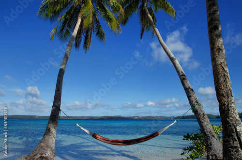 Fotografie, Obraz  Colorful hammock between palm trees, Ofu island, Vavau group, To