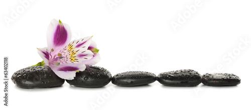 Fototapeta Kamienie i lilia