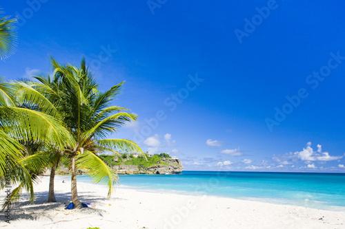 Foto op Plexiglas Caraïben Foul Bay, Barbados, Caribbean
