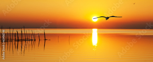 Canvas Prints Sea sunset en busca del sol naciente