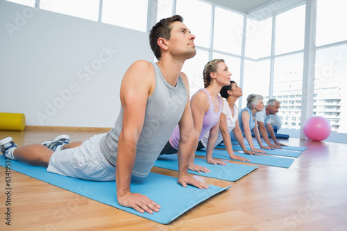 Photo  Group doing cobra pose in row at yoga class