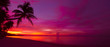 canvas print picture - Tropical sunset with palm tree silhouette panorama