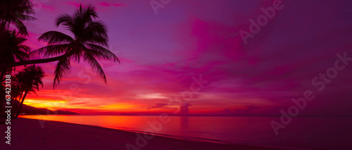 Keuken foto achterwand Tropical strand Tropical sunset with palm tree silhouette panorama