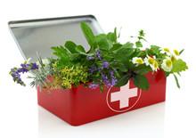 Fresh Herbs In First Aid Kit.