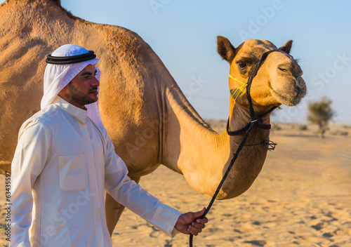 Fotografia Desert landscape with camel