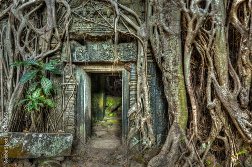 Poster Ruine Ancient stone door and tree roots, Ta Prohm temple, Angkor, Camb