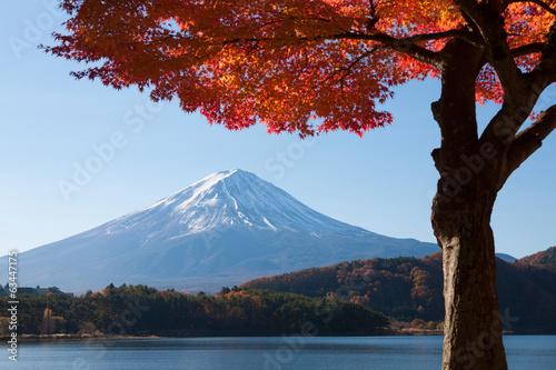 Fototapeta Japonia   jesien-liscie-krajobraz-japonii