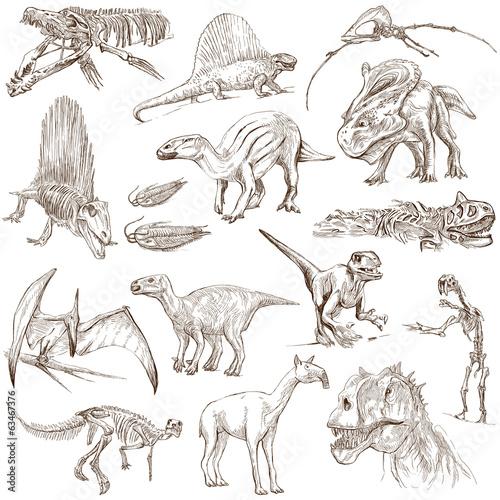 Photo  Dinosaurs no.2 - illustrations, full sized hand drawn set