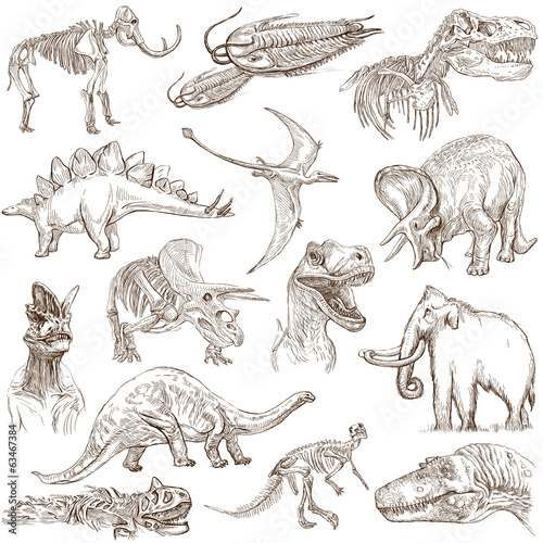Dinosaurs no.3 - an hand drawn illustrations, vector set Poster