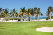 Golf Club With Palms In The Ga...