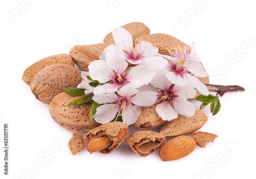 Canvas Print Almonds with a sprig