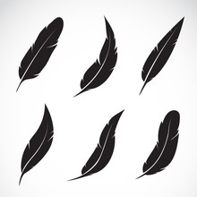 Vector Group Of Black Feather ...
