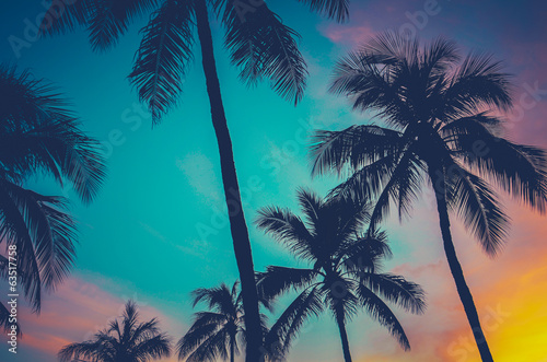 Spoed Foto op Canvas Palm boom Hawaii Palm Trees At Sunset