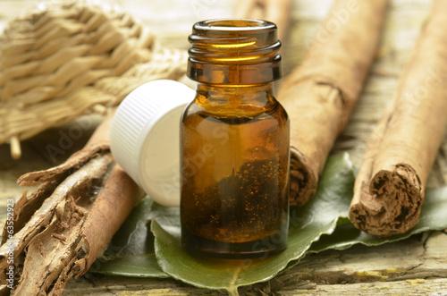 Slika na platnu கருவா Cinnamomum zeylanicum Sri Lanka cinnamon