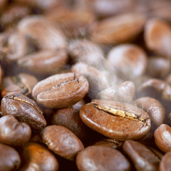 Fototapeta Roasted coffee beans with steam