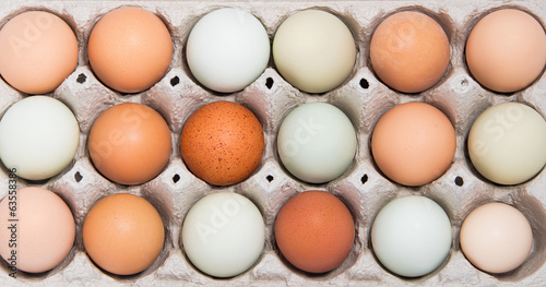 Colorful chicken eggs in tray