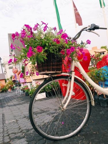 Foto op Plexiglas Flowers in basket bike