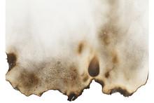 Burnt Paper Blank
