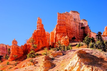 Orange hoodoos of Bryce Canyon National Park, USA