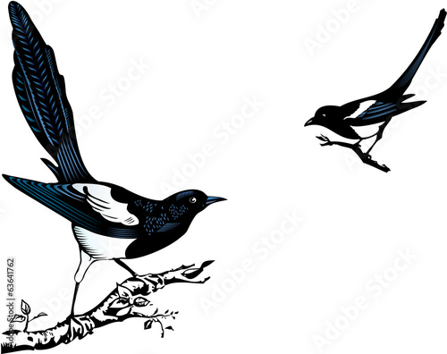 Magpies Wallpaper Mural