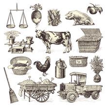 Farmers' Market Design Elements